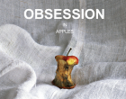 obsession_cover